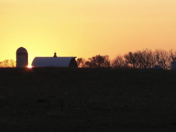 Farm Poetry