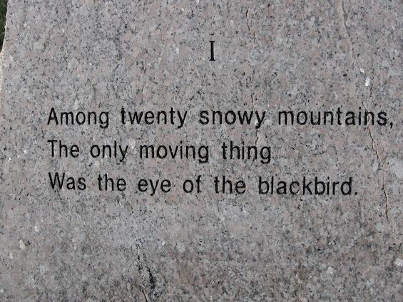 Wallace Stevens Walk Blackbird 1