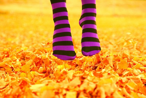 Poetry Party Striped Socks Fall Leaves