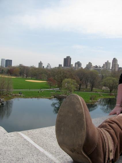 Cowboy Boot Turtle Pond Central Park