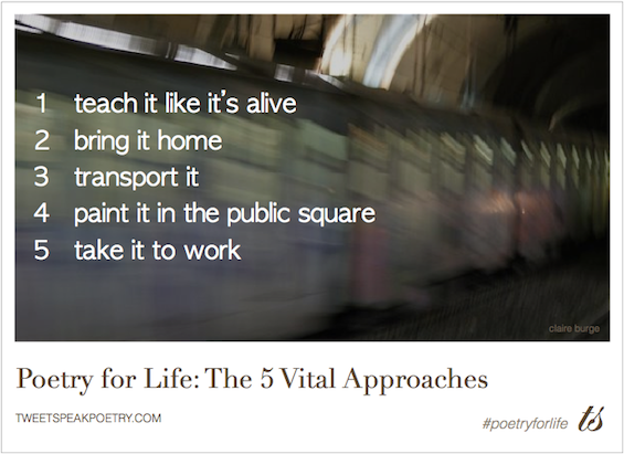 poetry for life 5 vital approaches