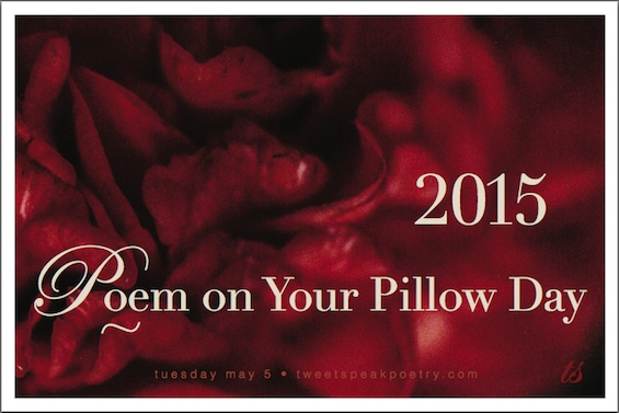 Poem on your pillow day 2015