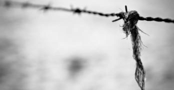 Holocaust poems