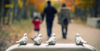 Top 10 Poetic Tweets birds on rail