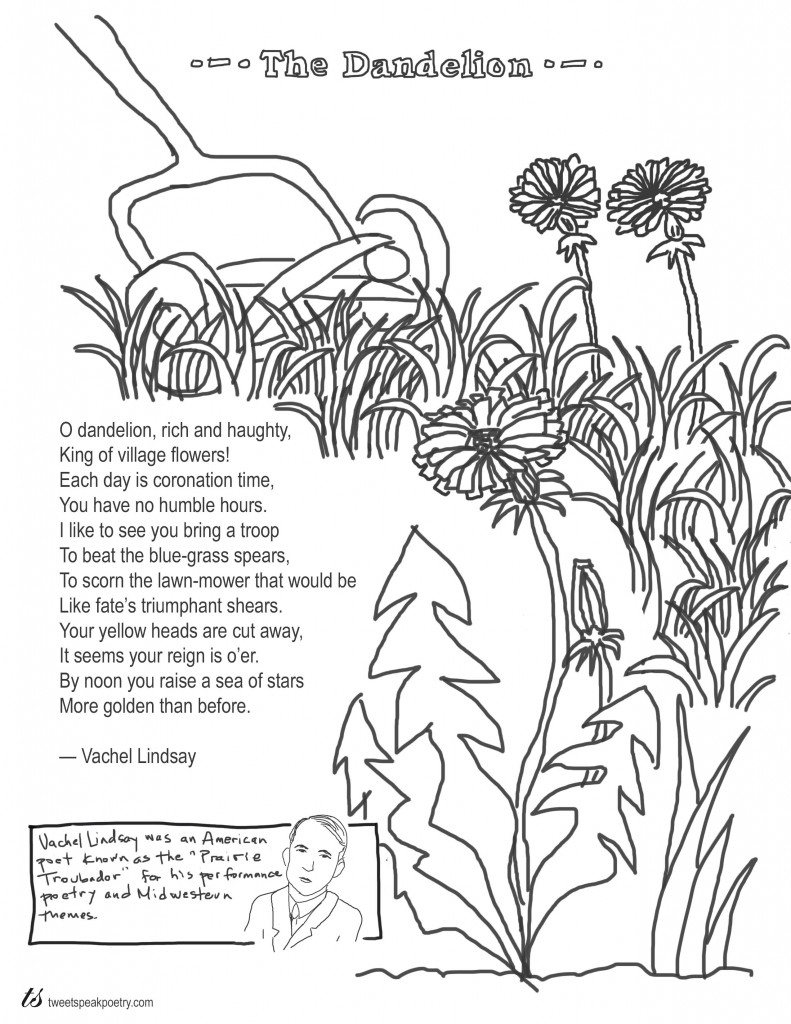 The Dandelion by Vachel Lindsay Coloring Page Poem