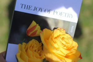 The Joy of Poetry with yellow rose