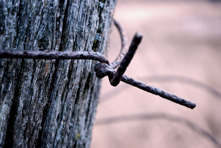 Top 10 Poems About Wood rough fence post with wire