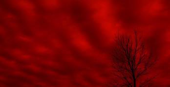 Red Sky Leonard Cohen