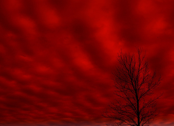 Red Sky - More than a Broken Hallelujah: Leonard Cohen