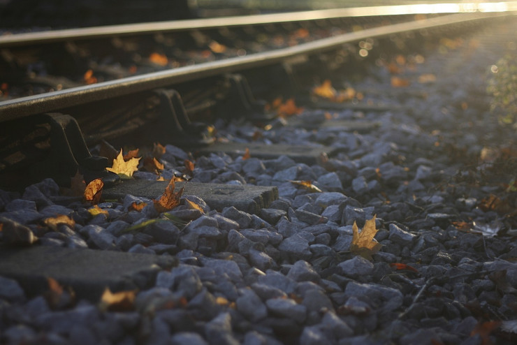 Regional Tour Holocaust Memorial Center Farmington Hills Michigan autumn leaves by railroad tracks
