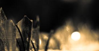 Juan Gelman Dark Times Filled with Light glass shards