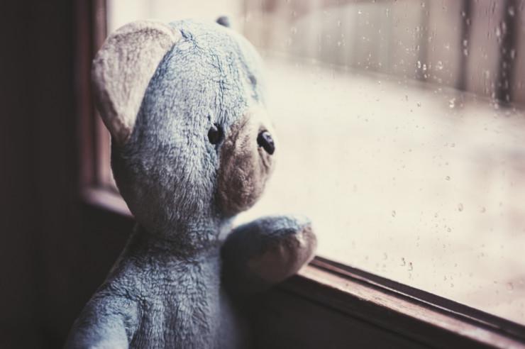 Emotional literacy - stuffed bear at window