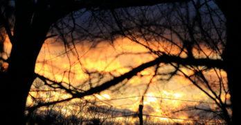 Sunset World War I Poetry
