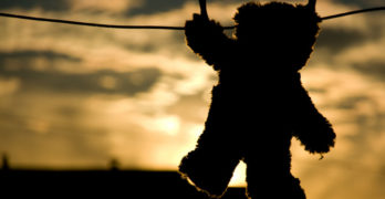 Teddy Bear on Clothesline Literacy Conversation