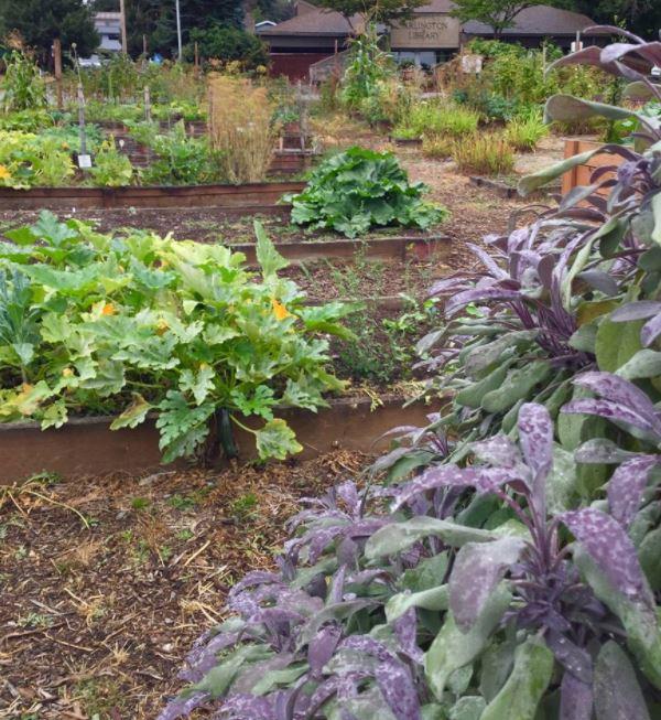 storybook garden 6