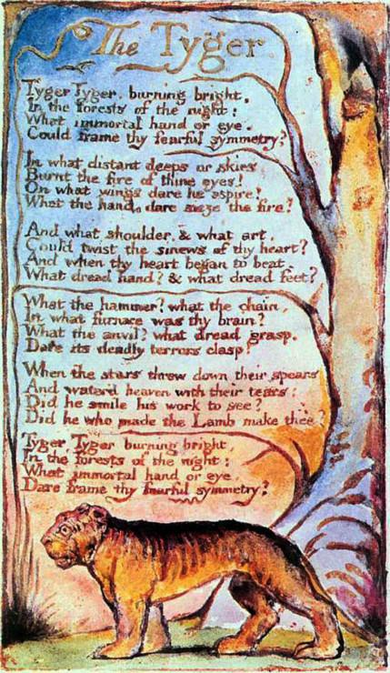 The Tyger William Blake illustration