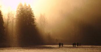 Winterfrost Indecency Justin Phillip Reed