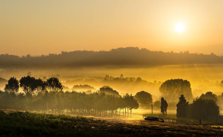 Poet Laura sunrise