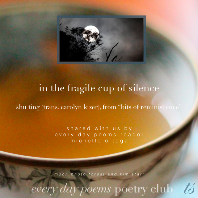 fragile cup of silence poem