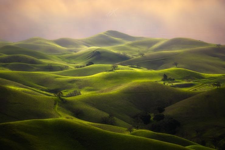 series of green dunes