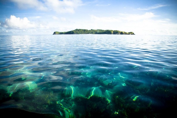 Jungle Sea for Lord of the Flies-Philipinnes