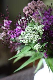 Purple flowers at the Beekeeper Inn