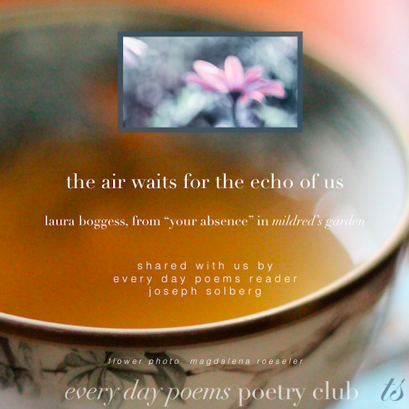 """air waits for the echo of us-""""your absence"""" poem from mildred's garden"""